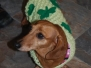 2011 St. Patty\'s Day Party